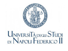 logo Federico II Napoli