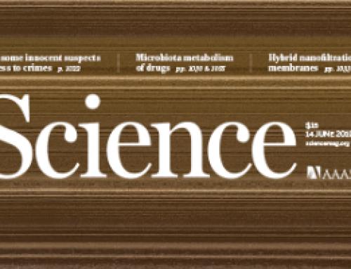 Mutation of a bHLH transcription factor allowed almond domestication